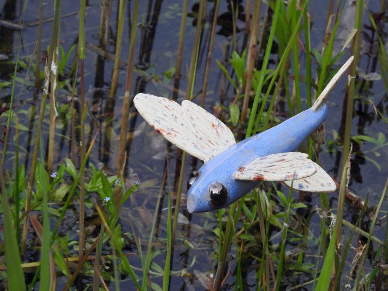 Vliegende Vissen no1